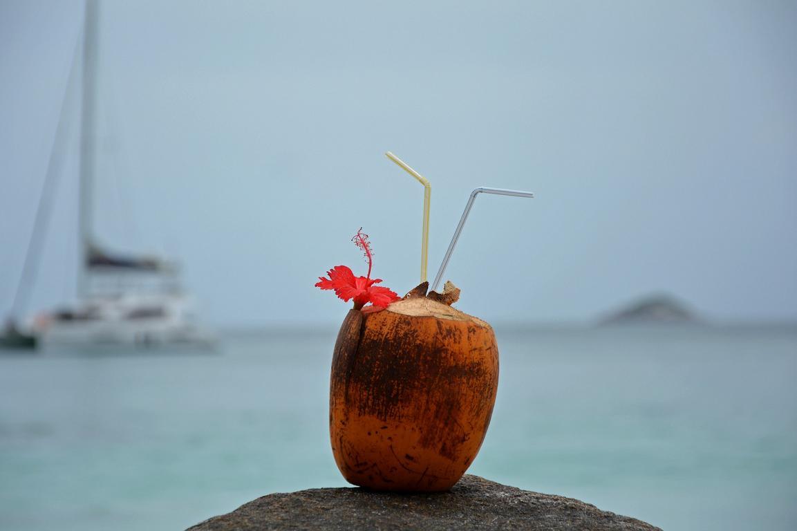 Kokusnusscocktail auf den Seychellen